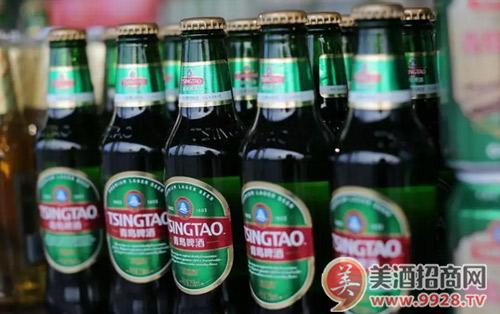 青岛啤酒经典1903 经典大众啤酒