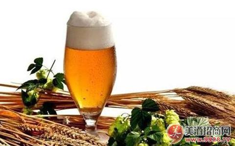 一瓶啤酒的能量是多少?
