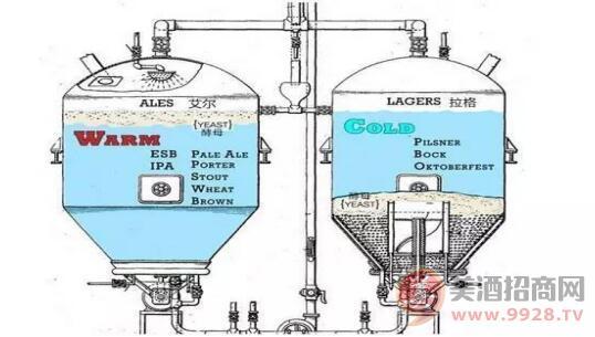 发酵工艺不同