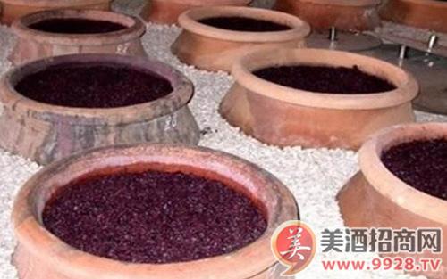 葡萄酒酿酒工艺之压帽
