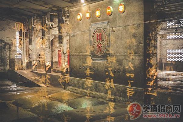 泸州老窖的窖池