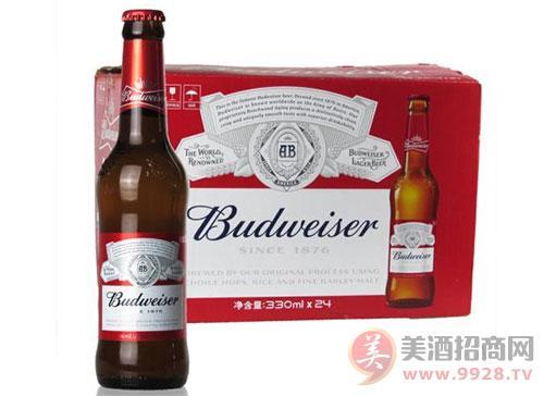 百威啤酒加盟