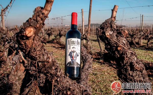好喝不贵的葡萄牙进口红酒推荐:传奇歌手精选红葡萄酒