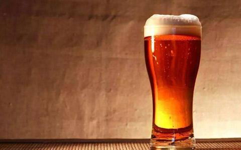 海南崂滨精酿啤酒厂项目签约
