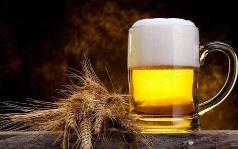啤酒能存放多久?