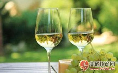 长相思葡萄酒美食搭配