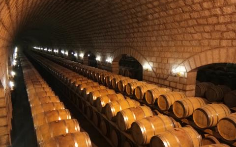 南澳州:澳大利亞葡萄酒的心臟