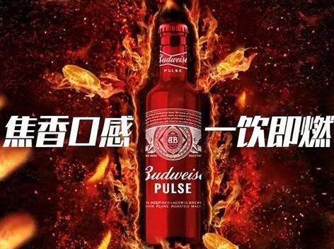 """百威推出新品""""魄斯""""啤酒"""