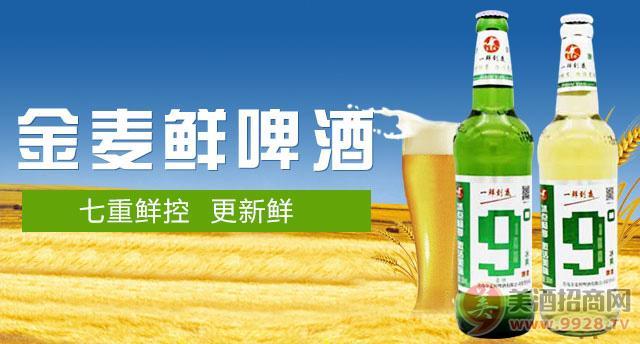 金���r啤酒