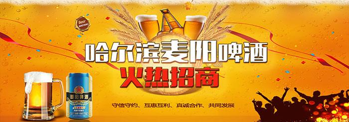 麦阳啤酒(广东)有限公司招商政策