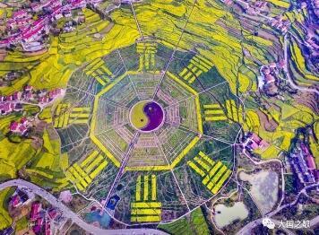 茅台在列!2020年贵州省十大工业产业重点调度企业名单发布