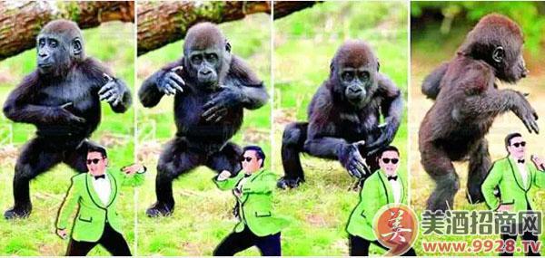 动物学家:因为男人最喜欢模仿大猩猩走路.